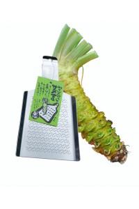 Wasabi pack : Azumino wasabi root + wasabi grater