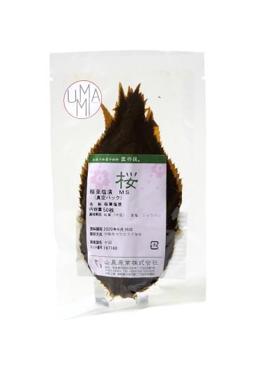 Feuilles de sakura (50 feuilles)
